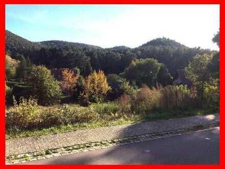 Nähe Bad Bergzabern: Ebener Bauplatz in ruhiger Lage
