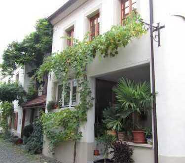 Liebevoll restauriertes altes Winzerhaus in Bad Dürkheim (Kreis), Freinsheim