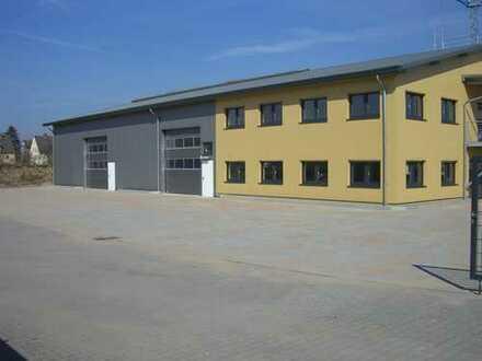 Büro-/Lager und Ausstellungsflächen