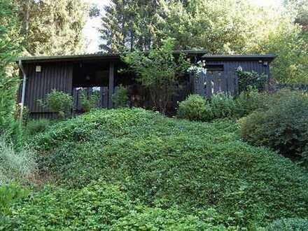 Idyllische Alleinlage – Waldhaus als Zweitwohnsitz. Mit den Rehen frühstücken