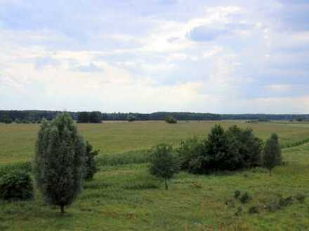 + Acker- und Grünflächen sowie Wald in und um Müllose! +