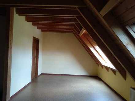 Geräumige, gepflegte 1-Zimmer-DG-Wohnung mit gehobener Innenausstattung zur Miete in Mannheim