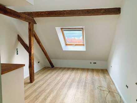 Stilvolle 1-Zimmer-Wohnung in Kaiserslautern - Erstbezug nach Renovierung