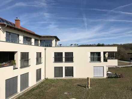 5-Zimmer-DG-Wohnung in Pirna- Jessen mit großer Dachterrasse und Kamin