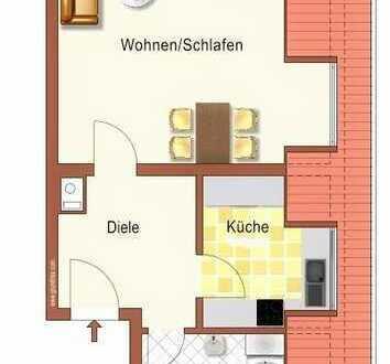 Helle, geräumige 1-Zimmer-DG-Wohnung zur Miete in Schifferstadt