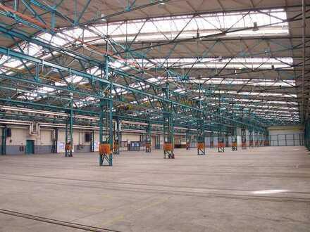 ca. 5.500 m² Hallenfläche B30 mit ebenerdiger Andienung