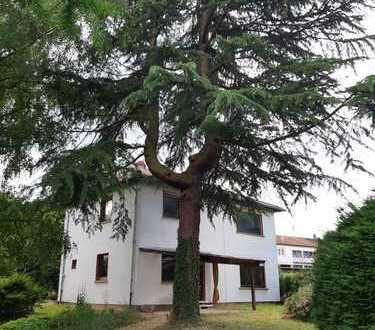 Schönes Haus mit sechs Zimmern in Südliche Weinstraße (Kreis), Pleisweiler-Oberhofen