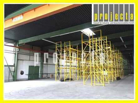 PROJECTA: 1.500m² Lagerhalle * 6 m UKB * 4 x Tore