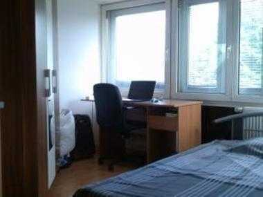 1,5 Zimmer Wohnung möbliert mit Balkon