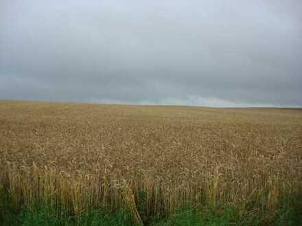 75 ha Landwirtschaftsfläche in Mecklenburg!
