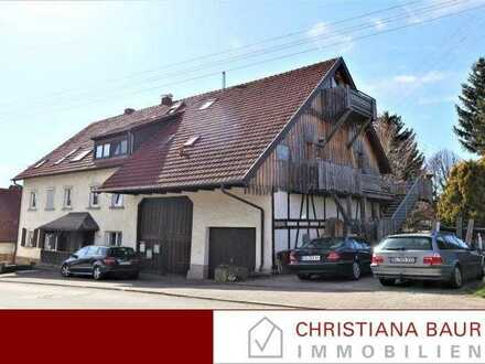 EIN AUSSERGEWÖHNLICHES ANWESEN: 4 Wohnungen in Steinhofen