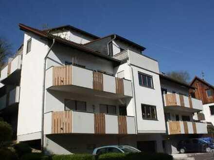 Renditestarkes 14-Familienhaus mit TG für Kapitalanleger in gesuchter Lage von HD Ziegelhausen !