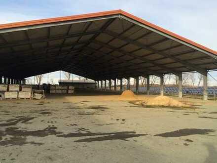 Sofort nutzbare Kaltlagerhallen & Bürogebäude bei Meißen in Krögis zu kaufen!