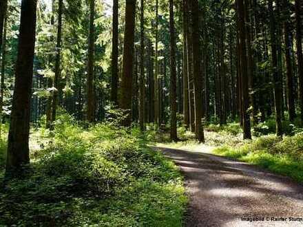 Diverse Forst- und Ackerflächen