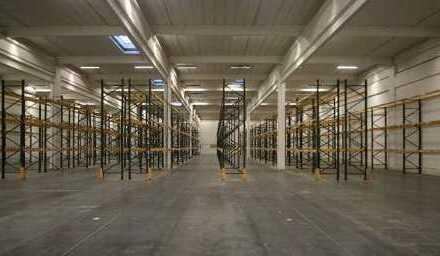 """""""BAUMÜLLER & CO."""" 2.500 m² Produktion/Service/Lager"""