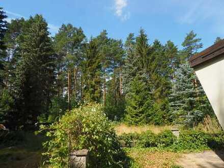 Ruhe pur, Natur satt - direkt am Waldrand gelegenes Erholungsgrundstück!