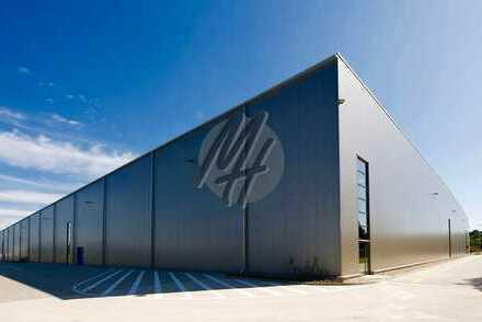 PROJEKTIERTER NEUBAU ✓ RAMPE + EBEN ✓ Lager (3.000 m²) & Büro (500-1.000 m²) zu vermieten