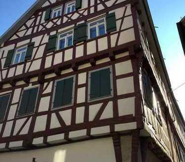 63,7 qm - 2 Zimmer am Schloß in Brackenheim in der Fußgängerzone