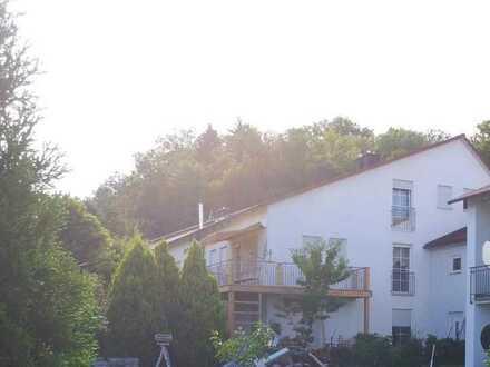 Villenartige DHH, äußerer Westen Regensburg
