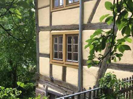 Wohnen in einer grünen Oase in Pf-Dillweißenstein