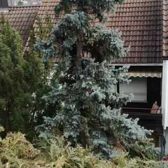 Stilvolle, gepflegte 2-Zimmer-Wohnung mit Balkon und Einbauküche in Stuttgart-Hedelfingen