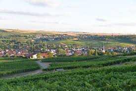 Wohnen in den Weinbergen REH in Jugenheim