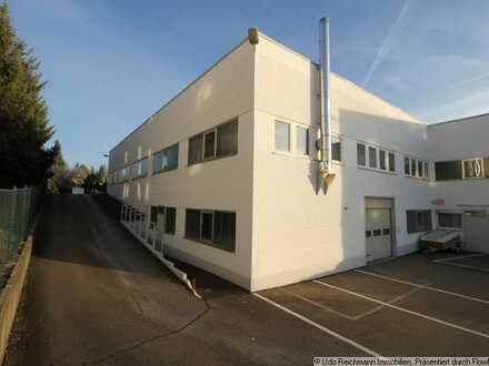 Gewerbehalle für Verkauf, Produktion / Lager / Dienstleistungen / Büro