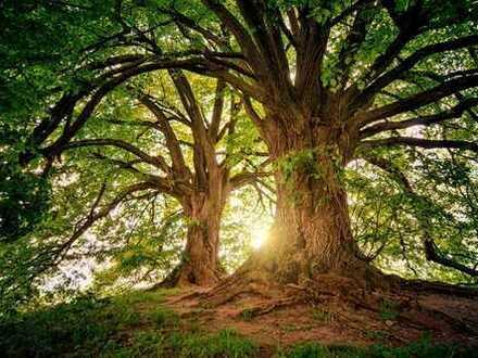 Für Individualisten mit Sinn für Natur!