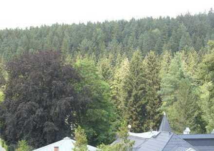 Günstige 3-Zimmer-DG-Wohnung mit Balkon in Bad Elster