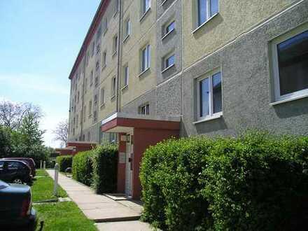 Große 4-Raum-Wohnung in Pragsdorf, 2 Monate Kaltmietfrei