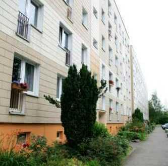 Erstbezug! Frisch Sanierte 2-Raumwohnung in Schönefeld