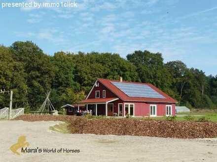 Reiterhof mit Haus, Reithalle + 3.000 m² Baureserve, Niedersachen, Cloppenburg zu verkaufen
