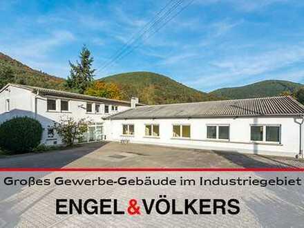 Lambrecht: Großes Gewerbe-Gebäude zur individuellen Nutzung