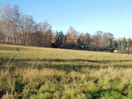 Sonniges Grundstück im Zentrum von Altenburg