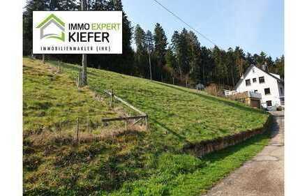 Idyllischer Bauplatz in Ortsrandlage von Horb-Talheim