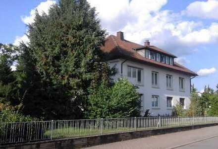 Gepflegte Wohnung mit Terrasse und Einbauküche in Südwestpfalz (Kreis)