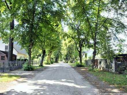 Herrliches Baugrundstück in Schildow