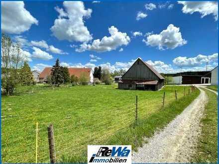 GEBOTSVERFAHREN! - Baugrundstück mit Wiesenfläche und Scheune in ländlicher Lage, Nähe Bad Saulgau