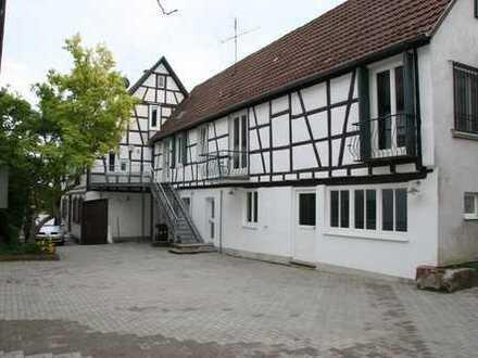 Sanierte 2-Zimmer-Wohnung mit Balkon in Herxheim bei Landau/Pfalz