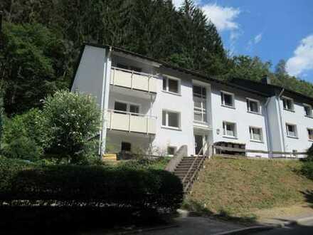 Mühlenrahmede / Nähe Rosmart, EG, ca. 64 m², 3 Zi. KDB, Abstellraum, Balkon, FRISCH RENOVIERT! 