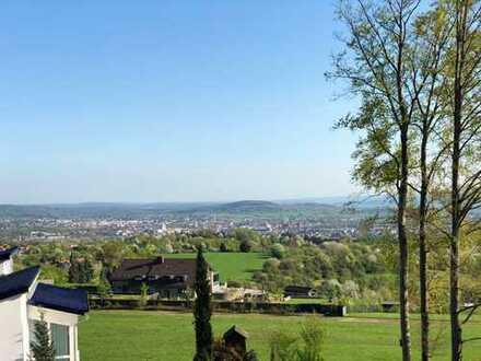 Himbeergrund: Exklusives EFH, 7 Zimmer, 4 Bäder, gigantische Sicht auf Aschaffenburg