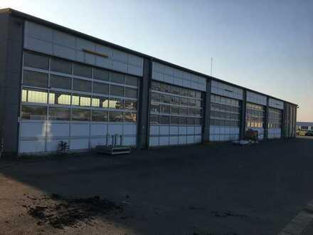 Produktions-/Lagerhalle mit Büro- und Freifläche in Lorsch