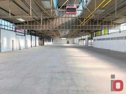 3500m² Hallen/Lager/Produktionsfläche in Viernheim zu vermieten
