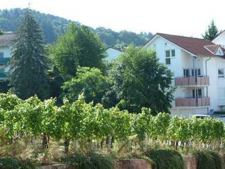 Schöne 4 Zi. EG.Whg. in Sinzheim-Vormberg. Ruhige, halbhöhen Randlage mit Blick in die Weinberge.