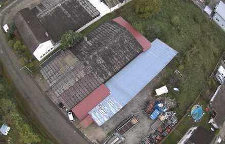 IMA-Immobilien bietet eine Lagerhalle in Ohlsbach