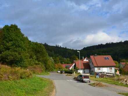 Sehr schönes, großes Grundstück in Strullendorf/Zeegendorf zu verkaufen