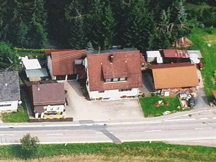 Gelegenheit! 2 Häuser, Nebengebäuden, Wiese und etwas Wald