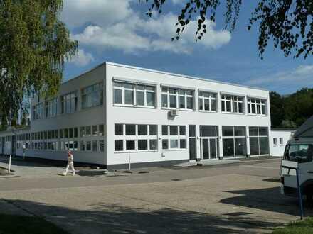 Raum Sinsheim: ca 500 m² Ausstellungs-, Produktions- und Lagerflächen mit Büros