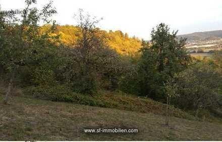 Obstbaumwiese mit Holzhütte Hanglage