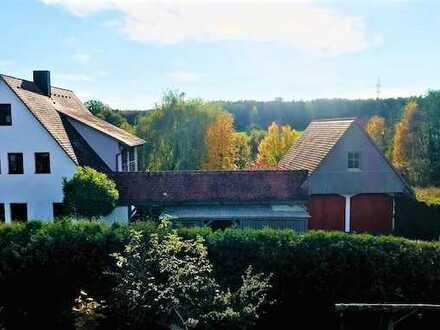 Großes Wohnhaus mit zwei Wohnungen, Doppelgarage und Carport in ruhiger Lage von Herzogenaurach